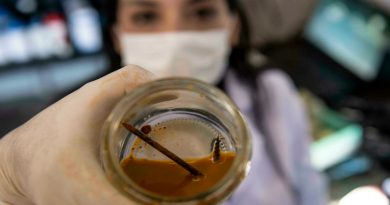 Chilean scientist plans to clean up mining with 'metal eating' bacteria