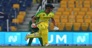 Stoinis, Wade help Australia survive South Africa scare